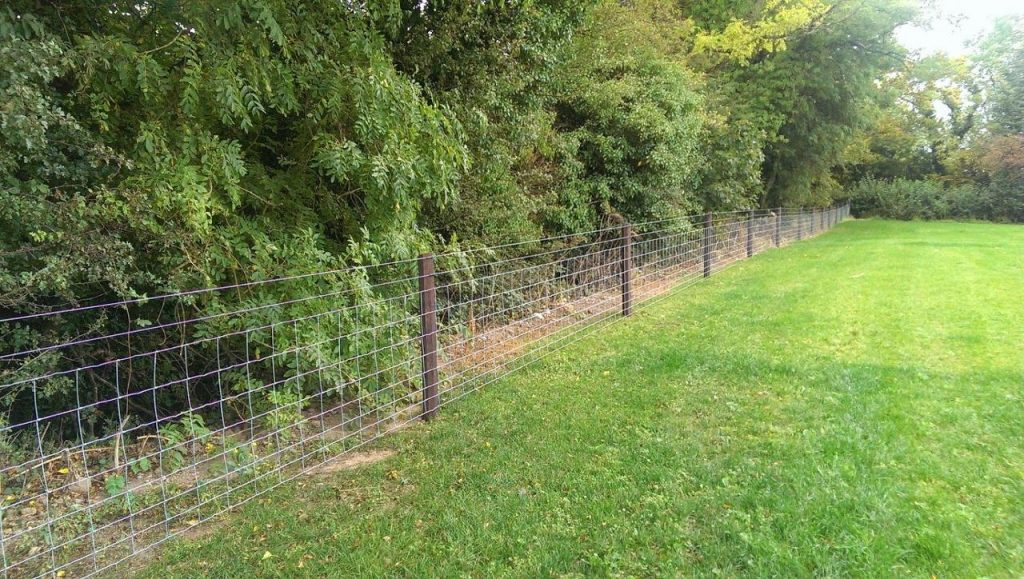 sheep wire fencing_1280x724